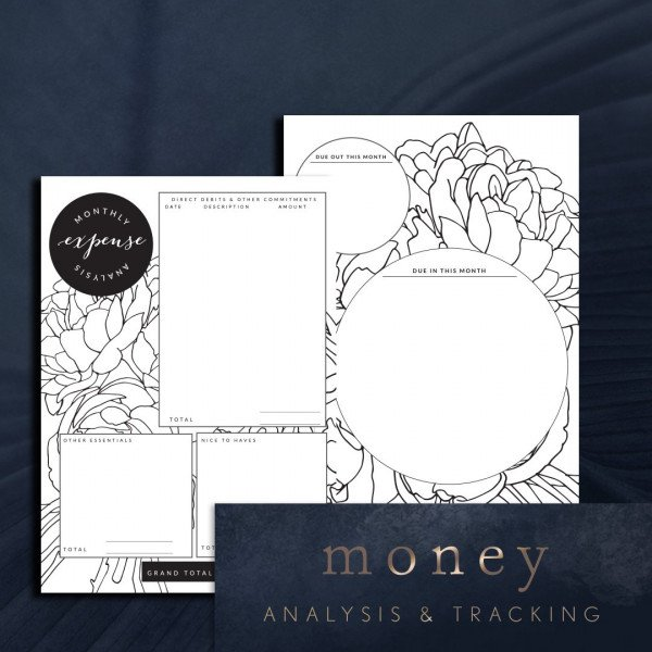 Peony money analysis and tracking planner page