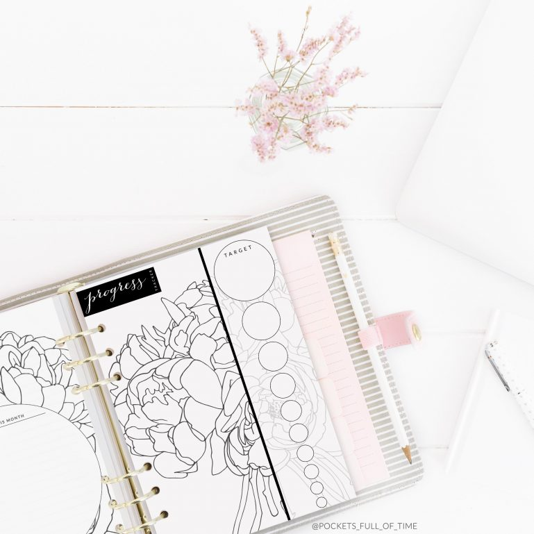 planner printable 10 step tracker