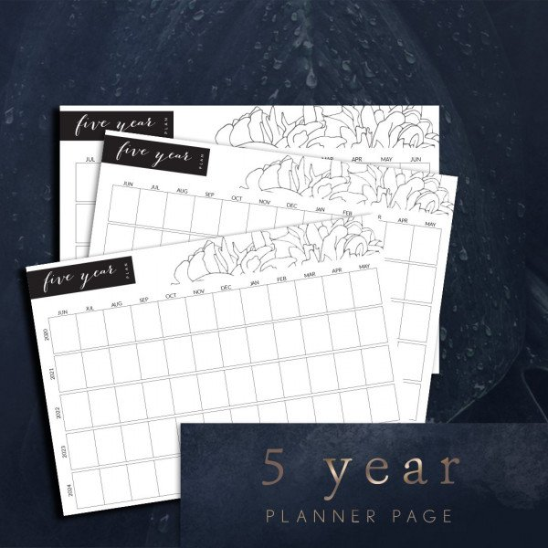 planner printable 5 year plan