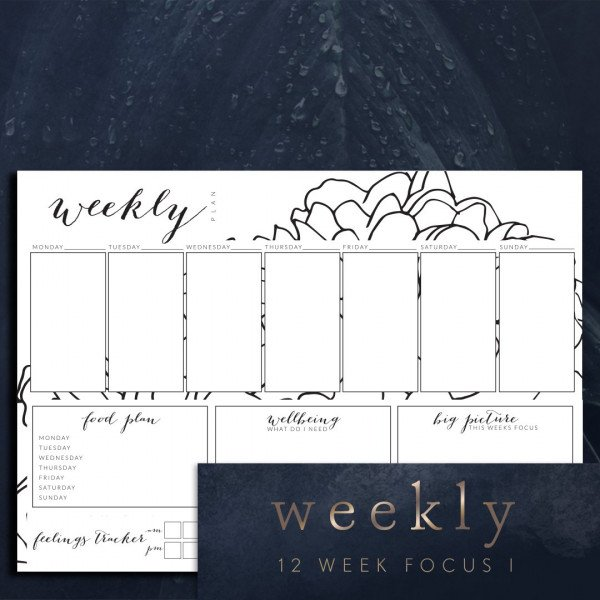 weekly planner page 12 week focus I