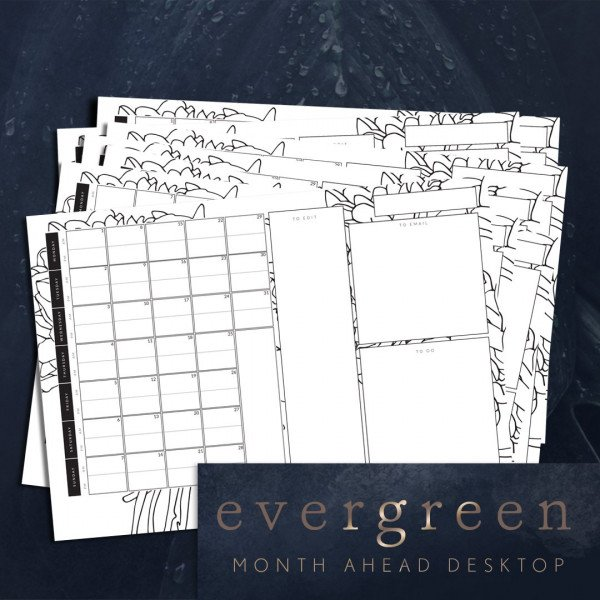 photographers evergreen desktop planner page