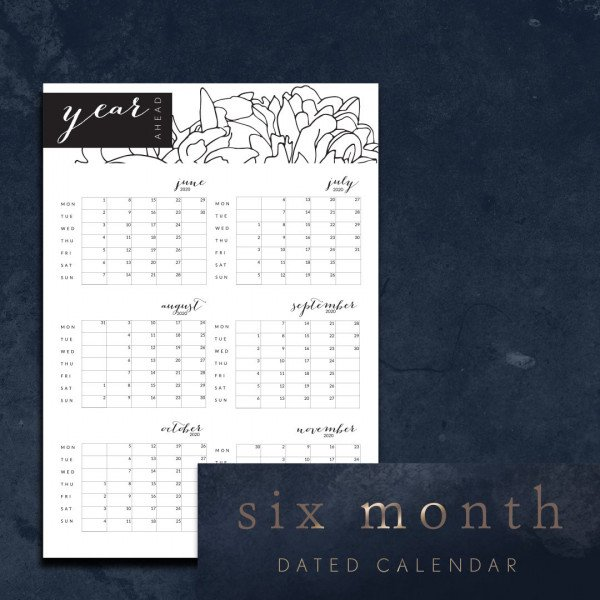 Six month dated calendar Jun 2020 - Nov 2020