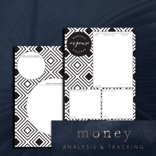 Topaz money analysis and tracking planner page