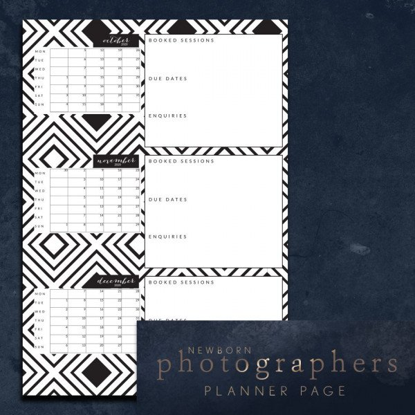 newborn photographers 6 months ahead planner page - 3 months per spread topaz Jul-Dec 2020
