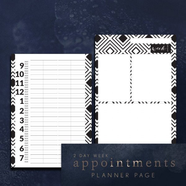 hairdressers appointment planner pages 2 day week
