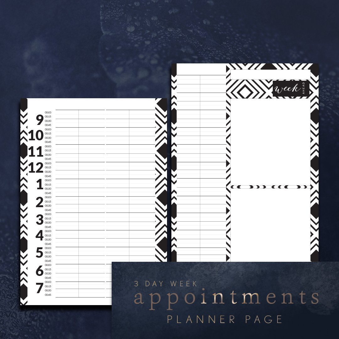 hairdressers appointment planner pages 3 day week